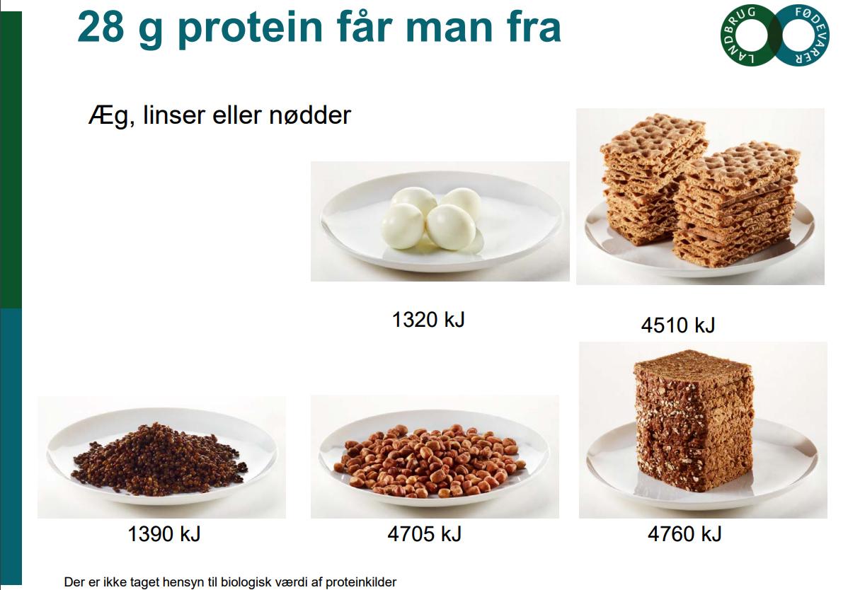 hvor mange proteiner er der i æg